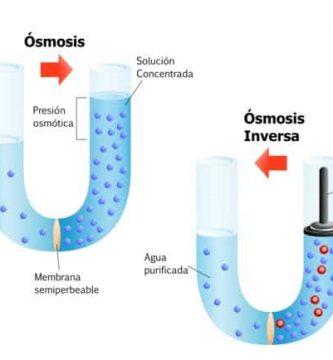 osmosis y osmosis inversa