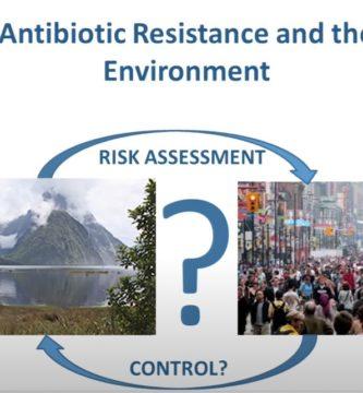 resistencia antibiotica en bacterias del agua